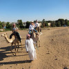 Camel Tour at Aswan (4)