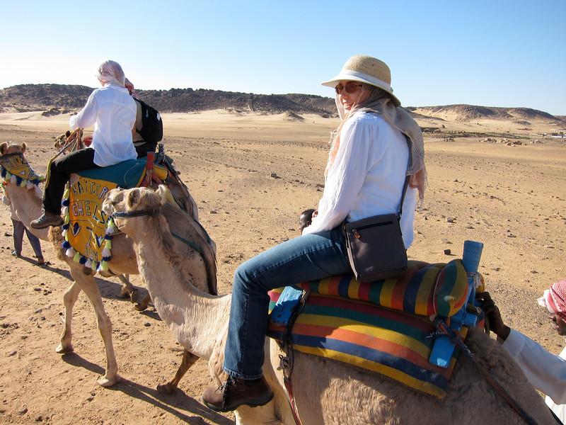 Camel Tour at Aswan (7)