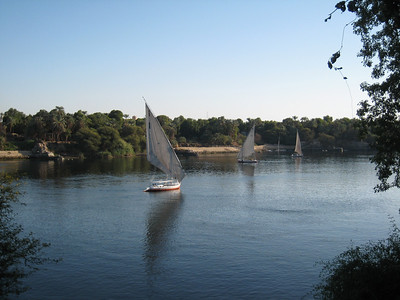 Felucas on the Nile, taken from the Botanic Gardens.