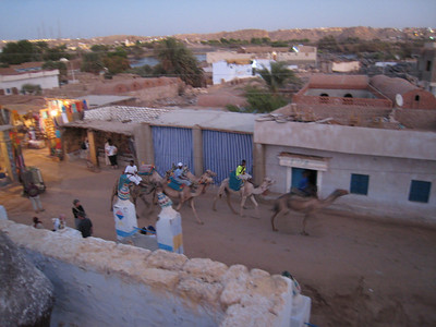 Street in the Nubian village taken from the roof of our host's house.