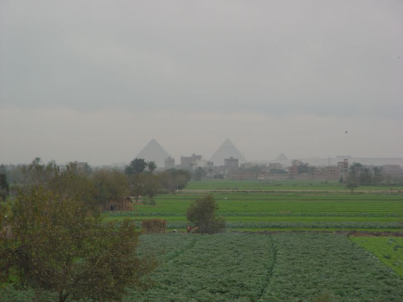 a) Driving back to Cairo, we saw the Giza pyramids again from our first day. This time from a distance across green fields.