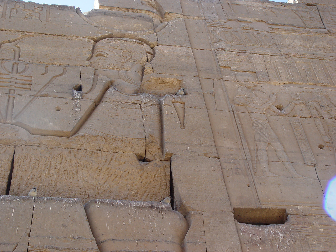 e) Some birds found a nesting placing in this carving of Ptah.