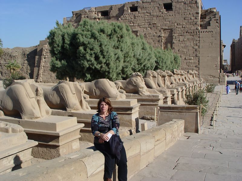 d) The avenue of the ram-headed sphinxes.