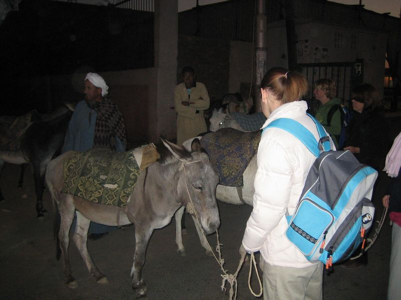 a) We start at dawn our donkey ride to the Valley of the Kings. I don't know how many km we actually did. We start off with a lot of laughter until we get used to riding our donkeys.