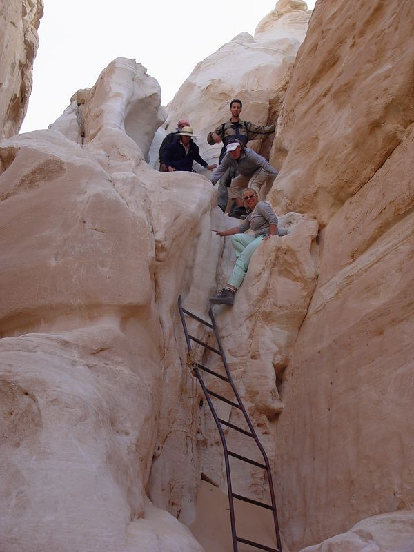 p) A quite sturdy looking ladder (not) to help us descend.
