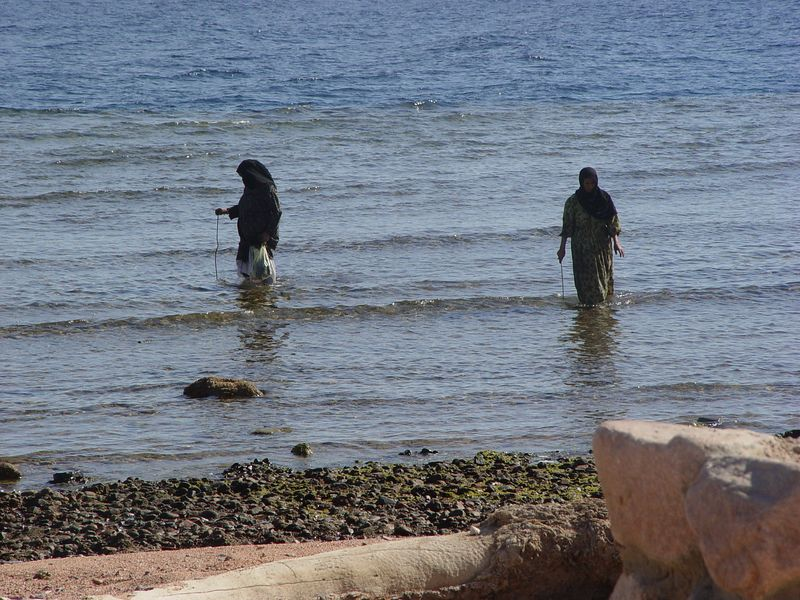 zh) Two local women combing the beach water for something.