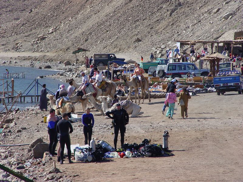 g) Divers, camels, and jeeps, what an atmosphere!