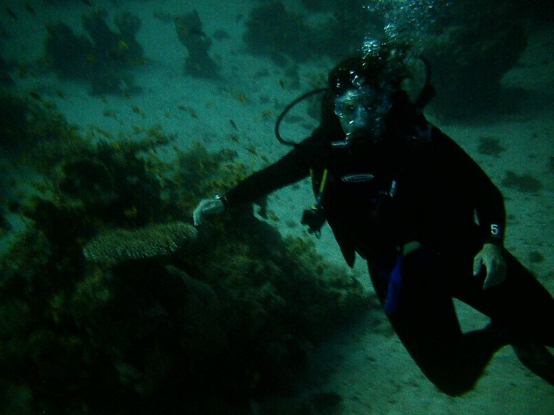 """zb) I gave the camera to our dive guide """"Ghandy"""" to take a photo of me."""