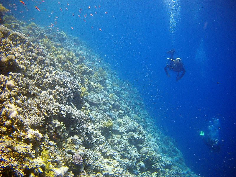 h6) The wall leading to the Blue Hole. The bottom is 80m. I look down and see a few divers with dual tanks and nitrox mixtures going for the arch.