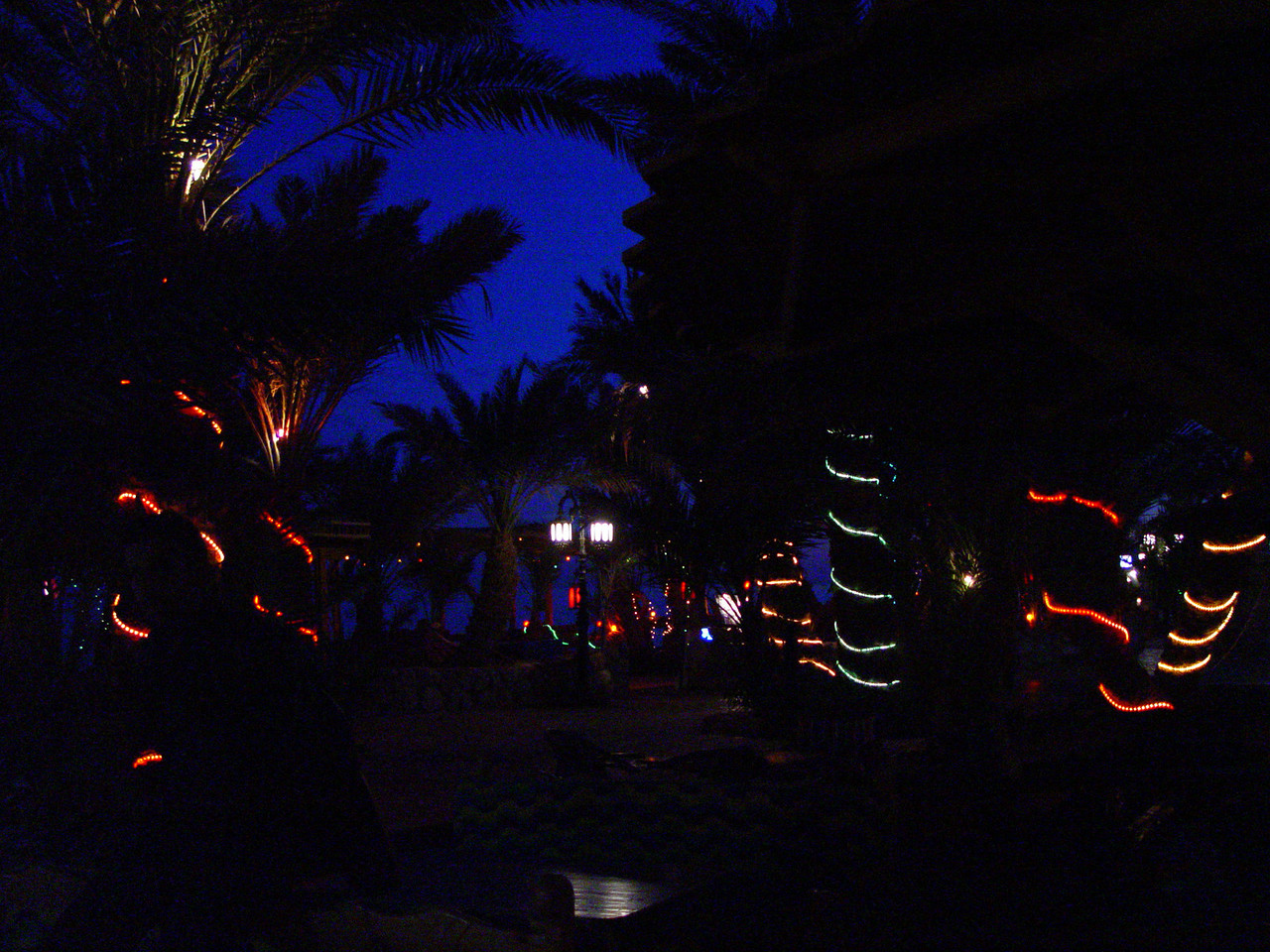 zl) Dahab beachside at night