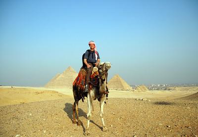 bad camel driver