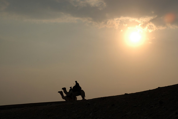 sunset camel riders