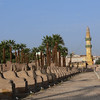This avenue of Sphinxes with human faces once lined the way to Karnak