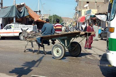 Edfu Streetlife