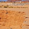 near our hotel in Sharm-el-Sheikh, Sinai, Egypt, our walk to Shark Bay -