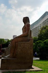 2009-10 Egypt-1000737