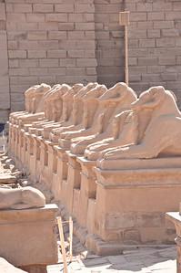 2009-10 Egypt-8563