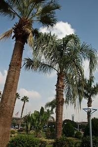 2009-10 Egypt-8464
