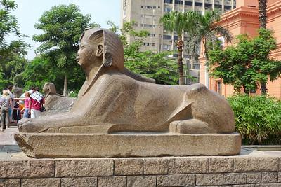 2009-10 Egypt-1000720