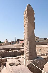 2009-10 Egypt-8562