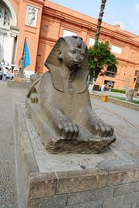 2009-10 Egypt-1000728