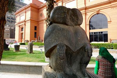 2009-10 Egypt-1000724
