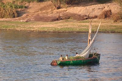 2009-10 Egypt-9131