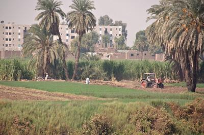 2009-10 Egypt-9209