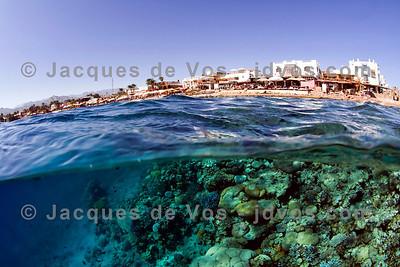 Lighthouse Reef, Lighthouse - Dahab, Egypt