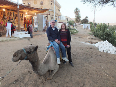 In Aswan, we took a camel ride.