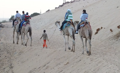 Camel ride in Aswan.