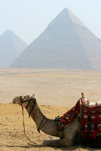 The picture looks like you are in the middle of the desert but on the other side of the pyramids is a teeming city.