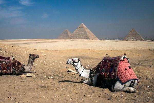 Egypt-8289