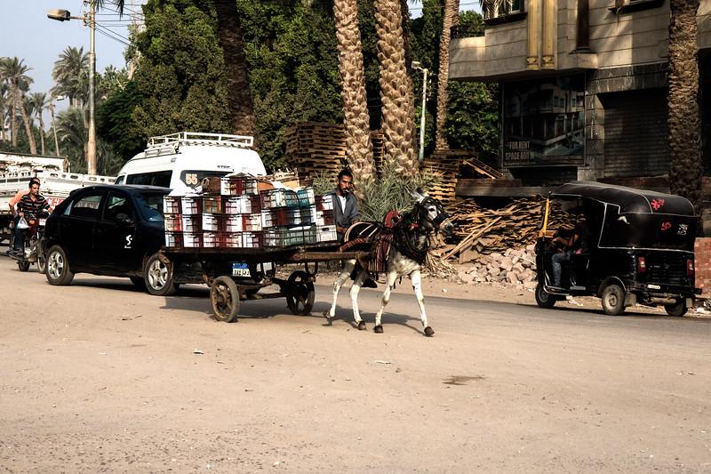 Egypt-8165