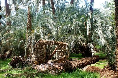 Oasis Bahariya