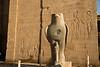 Egypt-8853