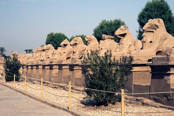 Egypt-9431