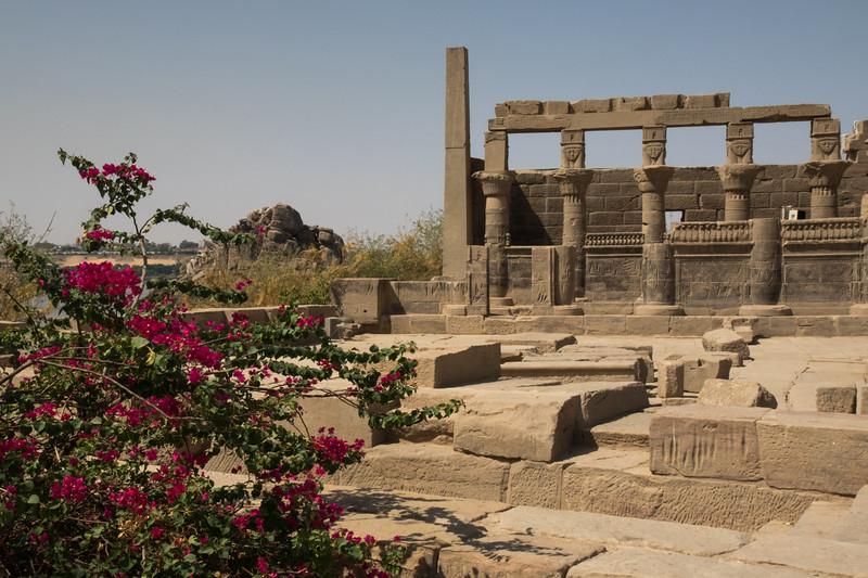 Egypt-8612