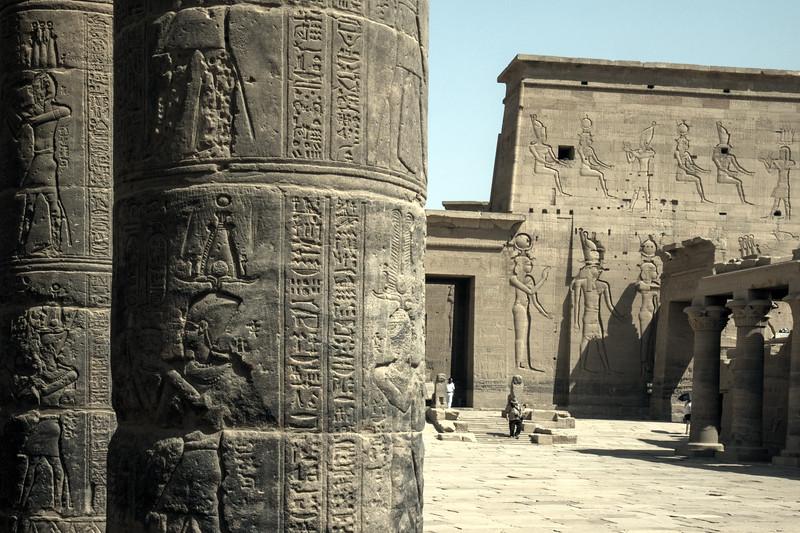 Egypt-8588