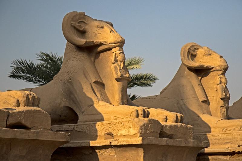 Egypt-9357