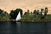 Egypt-8937