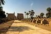Egypt-9471