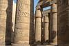 Egypt-9419