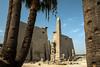 Egypt-9433