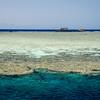 Jackson reef in Sinai