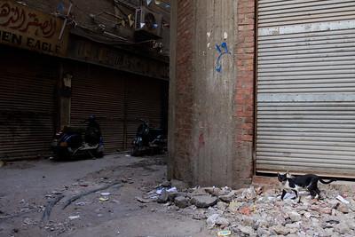 Egypt_NGingold_41