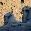 Ram-headed sphinxes at the entrance to the Temple of Karnak at Luxor.