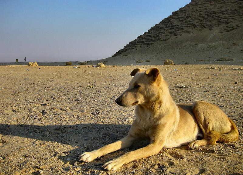 Alternative Sphinx, Red Pyramid, Dahshur.