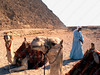 Egypt - Cairo - pyramids - camel and shaykh