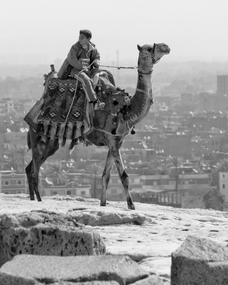 Boy on Camel, Giza, Egypt